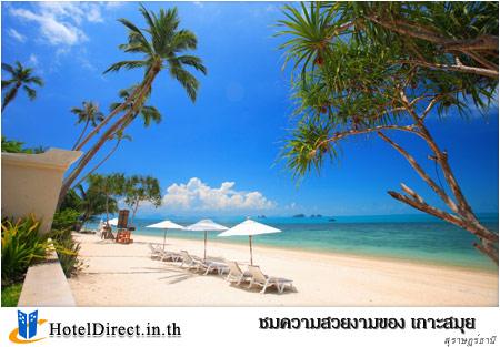 กิจกรรมที่น่าสนใจ  ชมความสวยงามของ เกาะสมุย