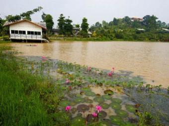 กระท่อมหิน นันทภัค NakhonRatchasima - สำรองห้องพัก