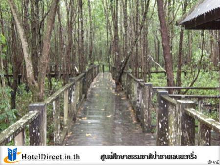สถานที่ท่องเที่ยว  ศูนย์ศึกษาธรรมชาติป่าชายเลนยะหริ่ง